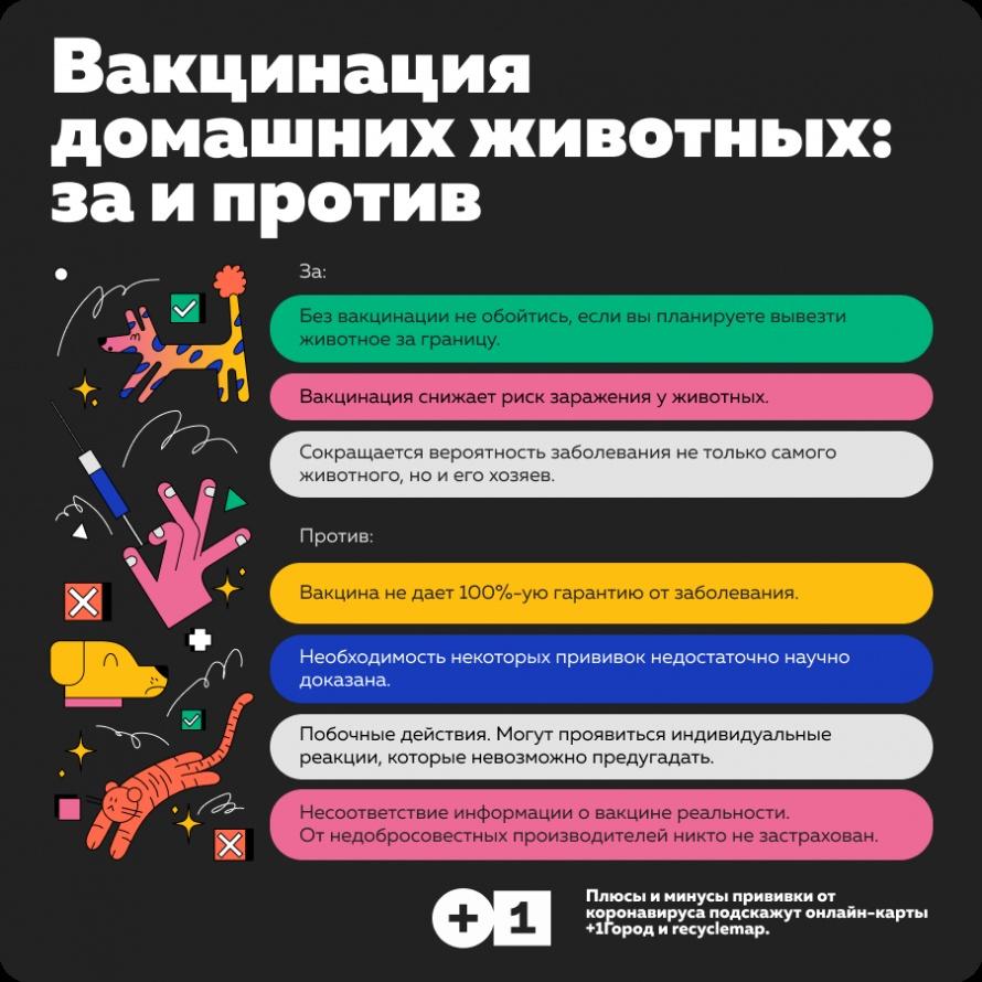 48-vakcinaciya-domashnix-animalsov-2.png