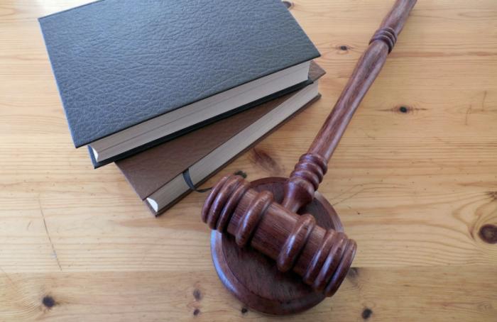 Суд оштрафовал за«Фиксиков» и«Смешариков»