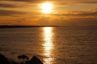 Вода врайоне Ласкового пляжа окрасилась вярко-зеленый цвет