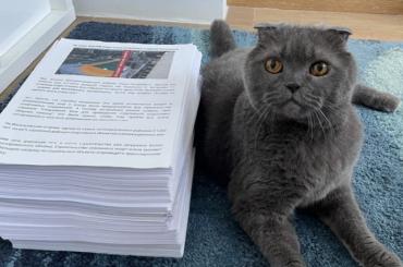 Петиция против строительства отеля набрала почти 30000 подписей