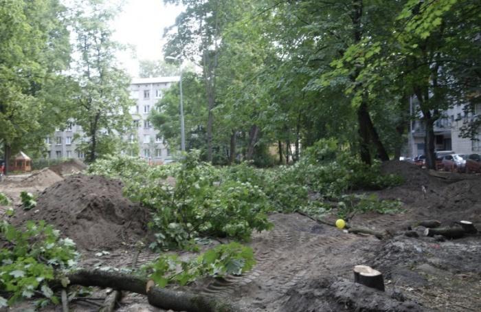 Петербуржцы возмущены тем, что деревья срубили без ихведома