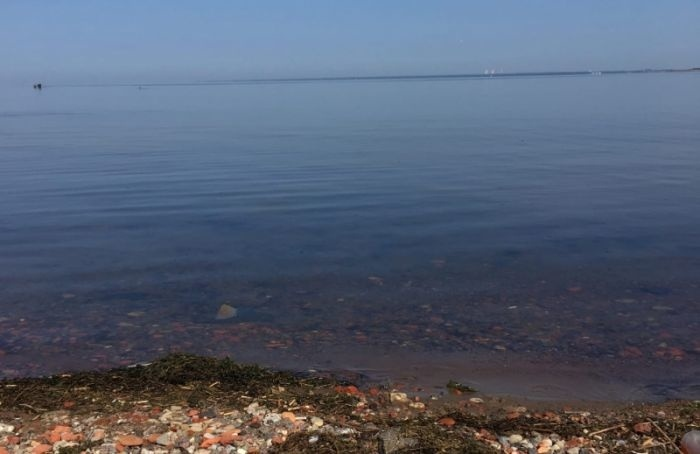 Жители Канонерского острова жалуются назагрязнение залива