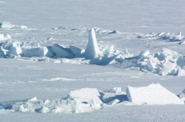 Холодная выставка вжару: как изображали Арктику врусской литературе иискусстве