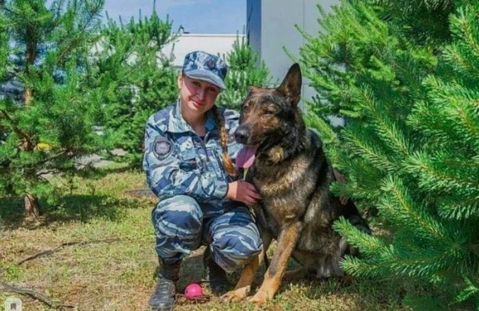 Служебный пес изПетербурга получил итальянскую премию «Собачья верность»