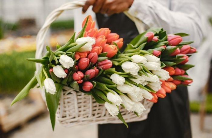 Роспотребнадзор дал советы, как выбрать цветы к1сентября