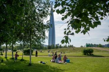 Комитет поблагоустройству Петербурга рассмотрел идеи улучшения газонов