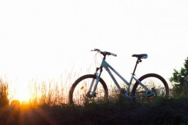 Вдоль Финского залива вэтом году появится велодорожка