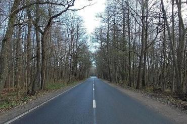 Кронштадтское шоссе расширят дочетырех полос