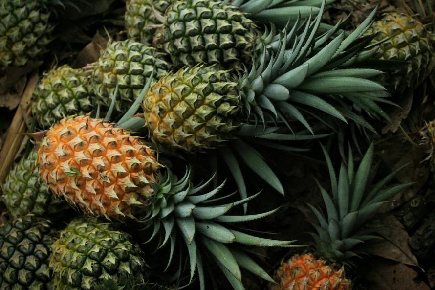 pineapple-3808963_1280.jpg