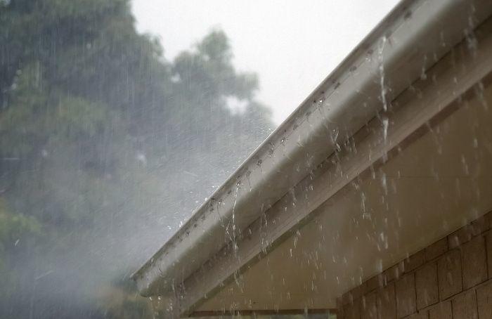 Сады, парки искверы закрыли из-за приближающегося шторма