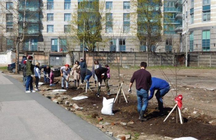 Петербуржцы смогут высадить деревья вцентре города