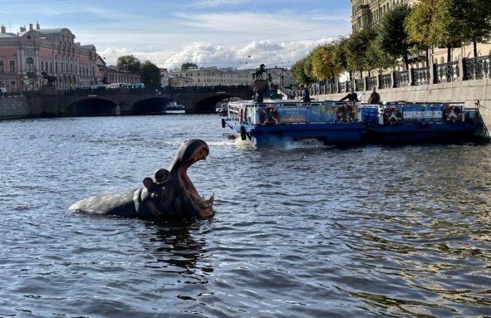Вводоемах Петербурга заметили огромного бегемота икрокодила