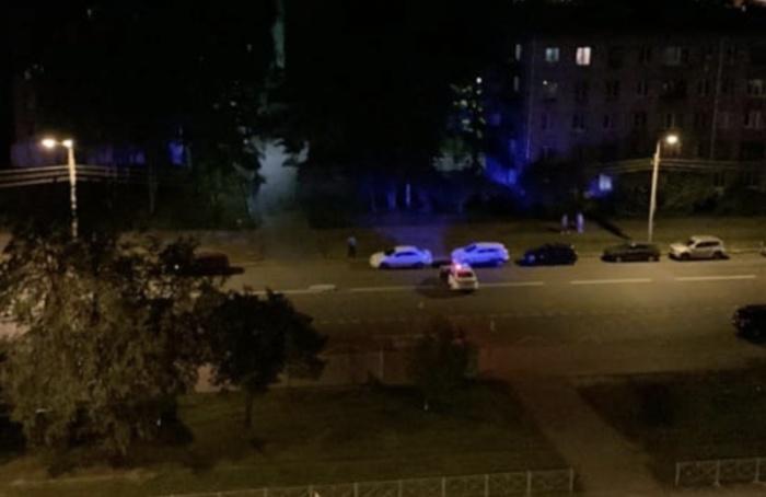 Автомобиль насмерть сбил женщину ссобачкой