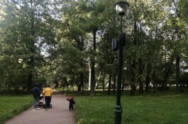 Местные жители борются смузыкой вТаврическом саду