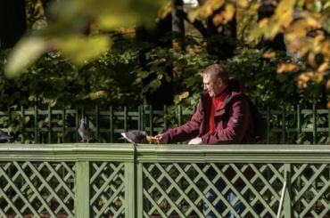 Петербуржцам прогнозируют «бабье лето воблаках»