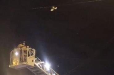 Спасатели освободили голубя, запутавшегося втрамвайных проводах