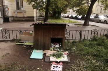 Умер пес Миша, который много лет жил водворе наПарадной улице