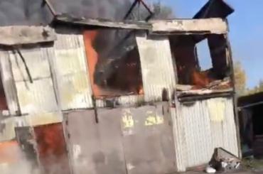 ВКудрово при пожаре погибли десятки кошек