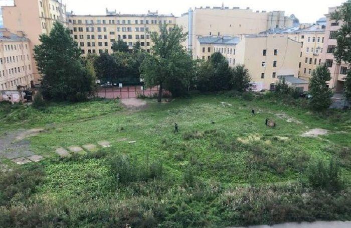 Комблаг предлагает петербуржцам выбрать самый запущенный парк