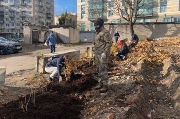 Активисты высадили 80 кустов шиповника вСаду Памяти