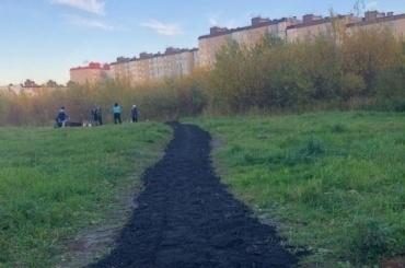 Жители Детскосельского создали парк исейчас доделывают дорогу кнему