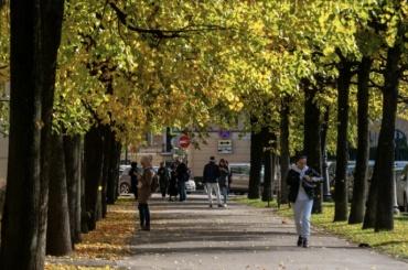 Днем вПетербурге будет ясная исолнечная погода
