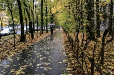 Парки искверы Петербурга закрывают из-за надвигающегося шторма