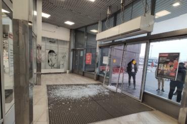 Кабан атаковал супермаркет наулице Савушкина